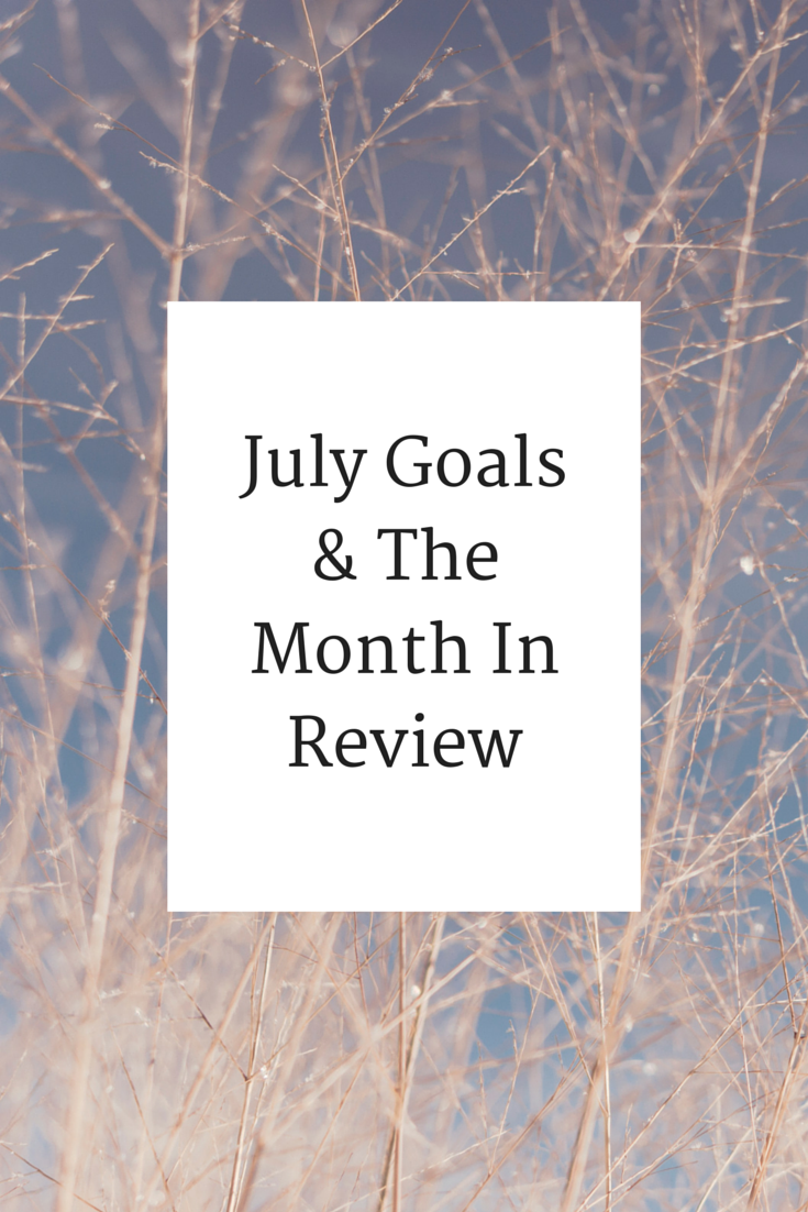 July%2BGoals%2B%2526%2BThe%2BMonth%2BIn%2BReview.png