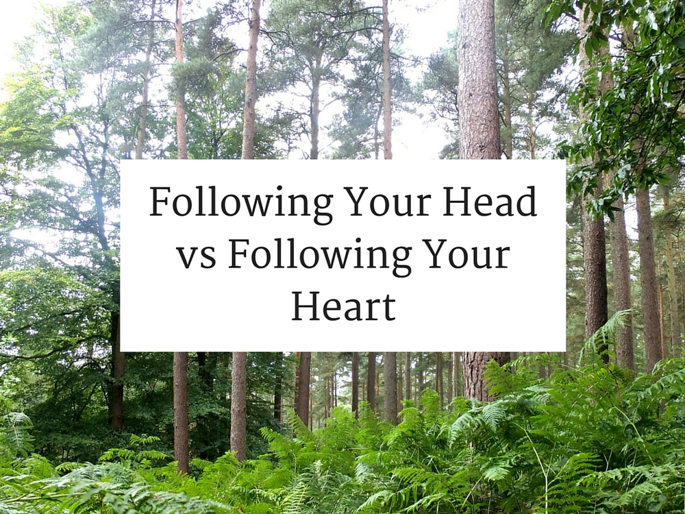 Following Your Head vs Following Your Heart