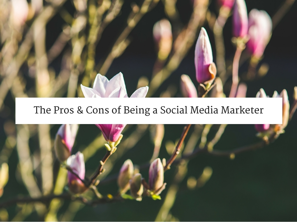 The Pros and Cons of Being a Social Media Marketer