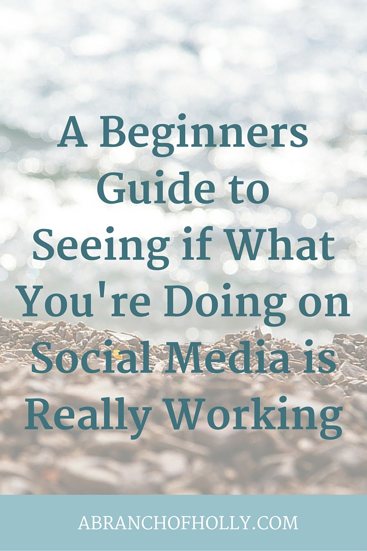 A Beginners Guide to See if What You're Doing on Social Media Is Really Working