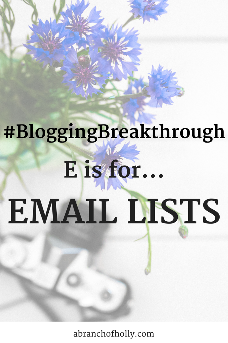 What is An Email List?