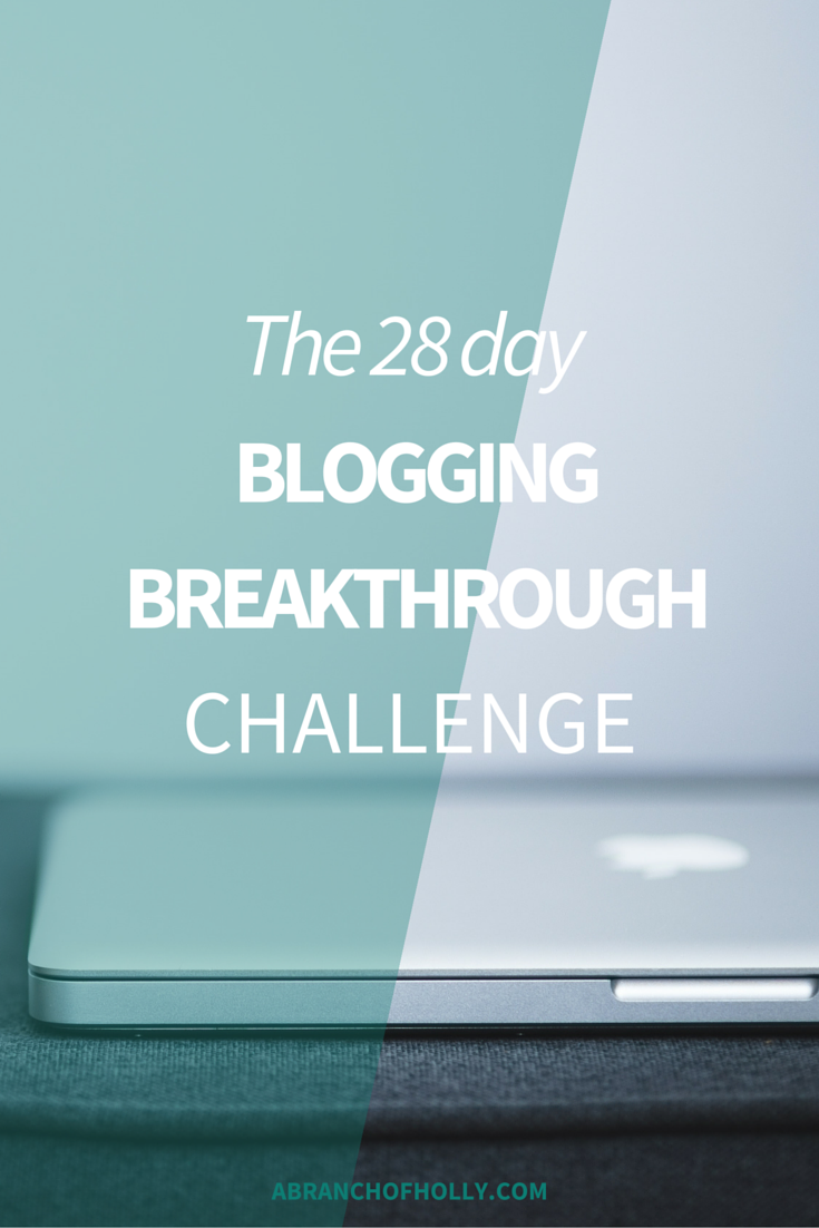 The 28 Day Blogging Breakthrough Challenge