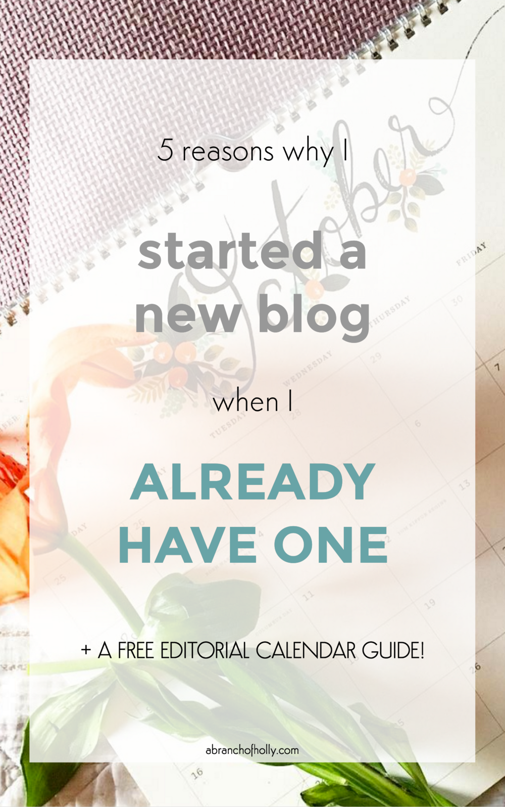 5 reasons why I'm starting a new blog when I already have one