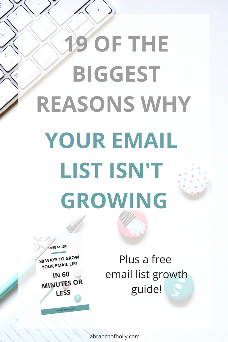 19 OF THE BIGGEST REASONS WHY your email list isn't growing.png