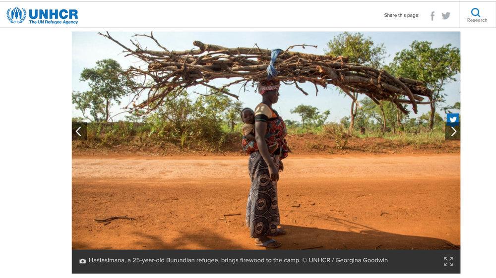 UNHCR: Saplings take root and transform lives in Tanzania