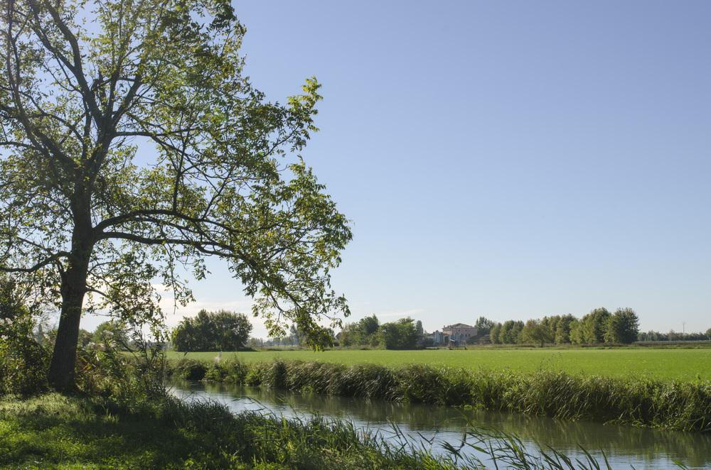 Goito, i prati stabili in riva al fiume Mincio