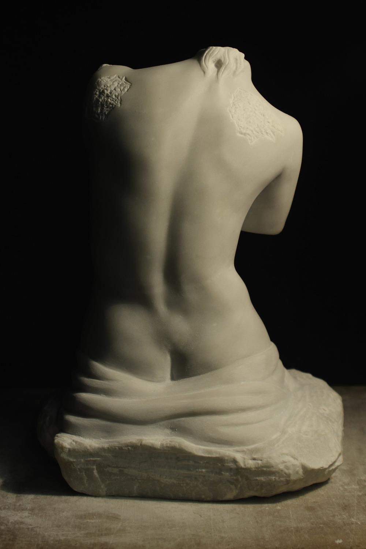 Venus back.jpg