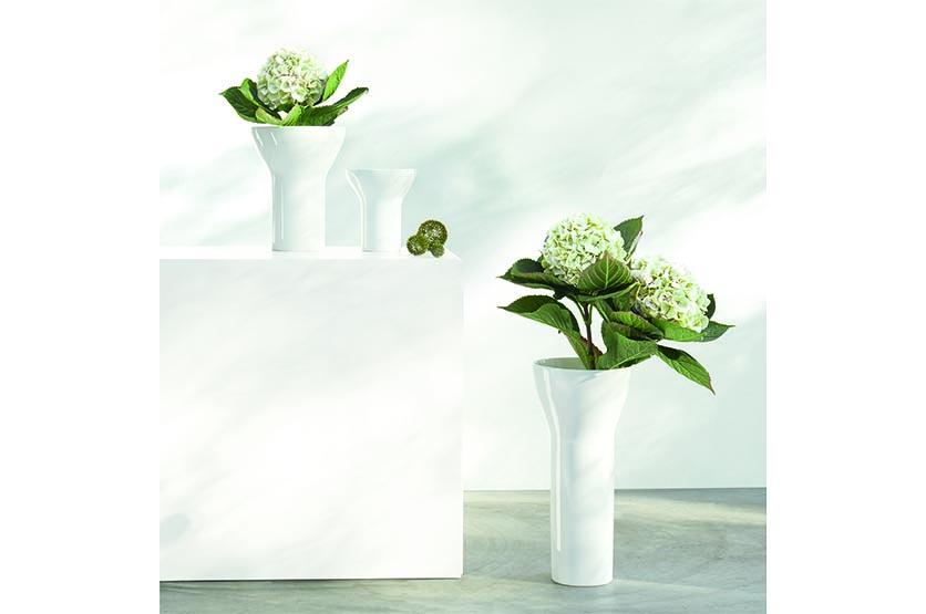 Tulip Vasen.jpg