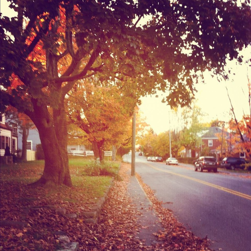 { My quaint little neighborhood engulfed in maroon + orange. Walking down these streets is something I'll never forget. }