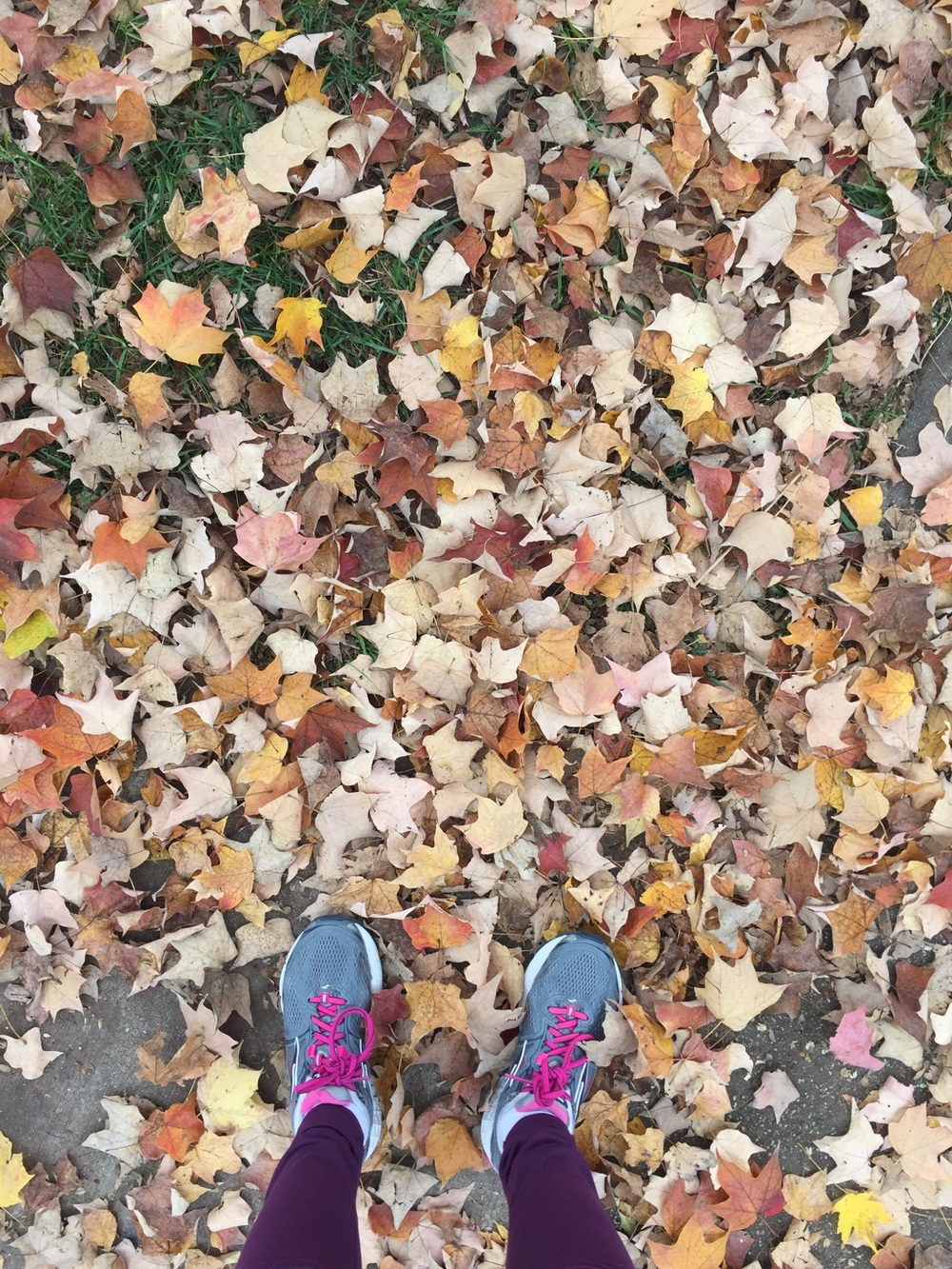 { Hues of fall. }