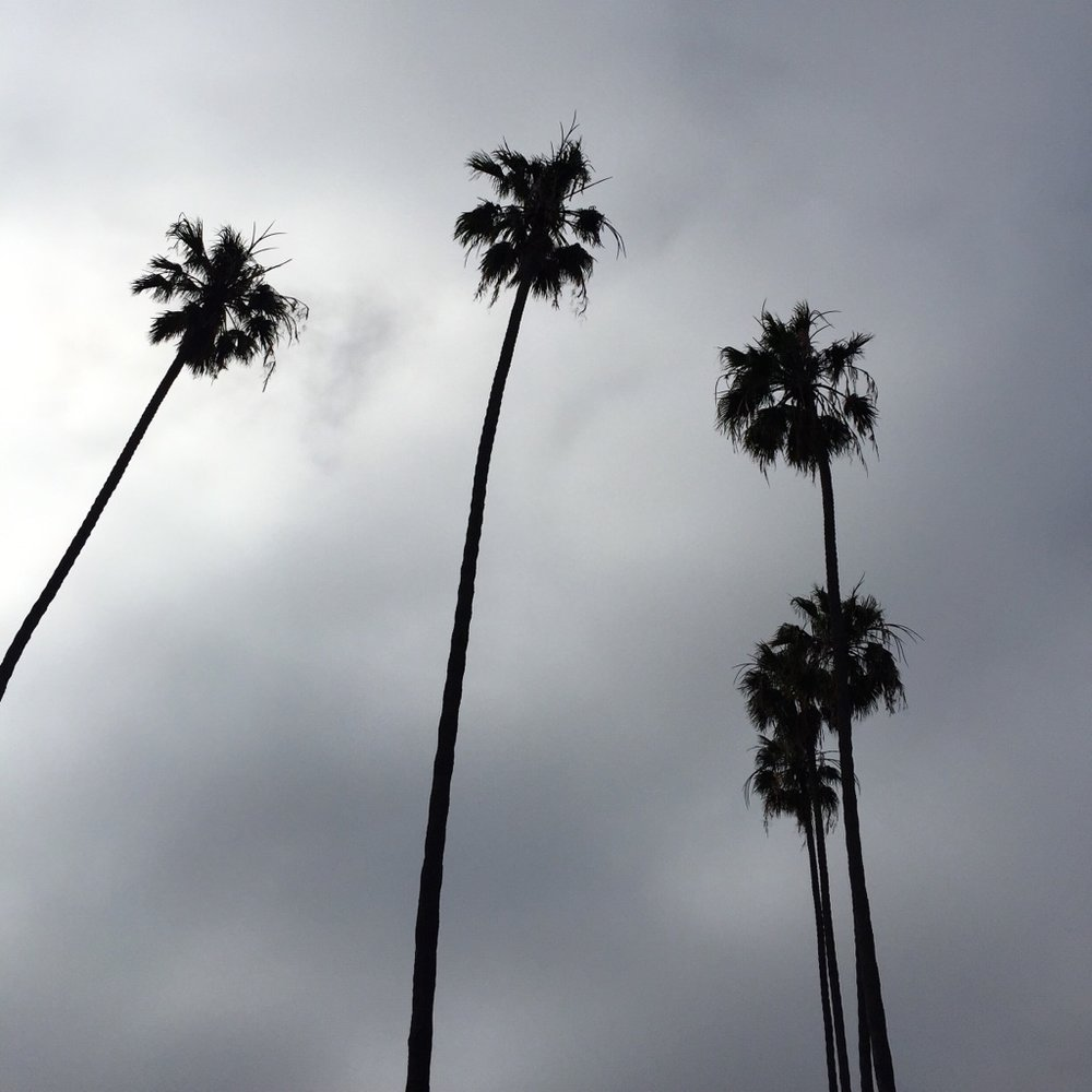 { Looking back on my trip to LA in May. Even the dark skies are beautiful. }