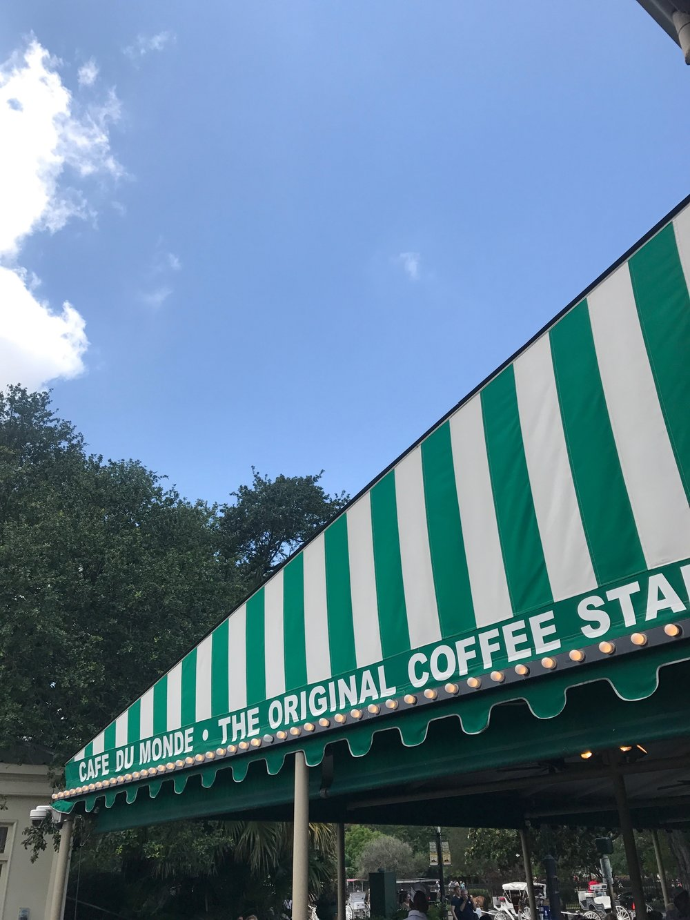 { Cafe du Monde looking mighty fine }