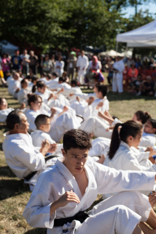 Shito Ryu Karate demonstration.