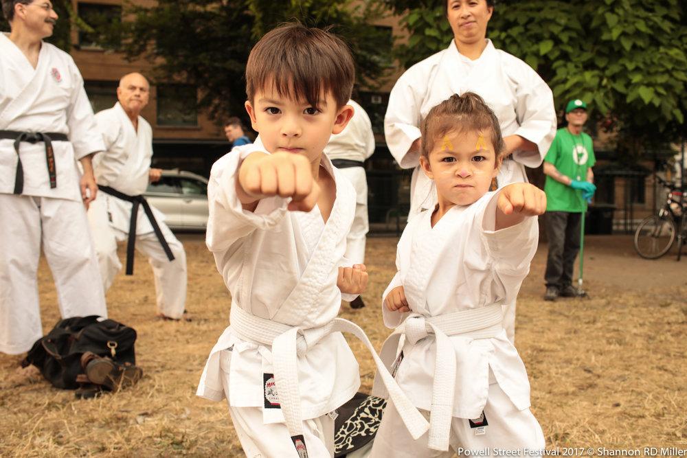 Shito Ryu Karate.