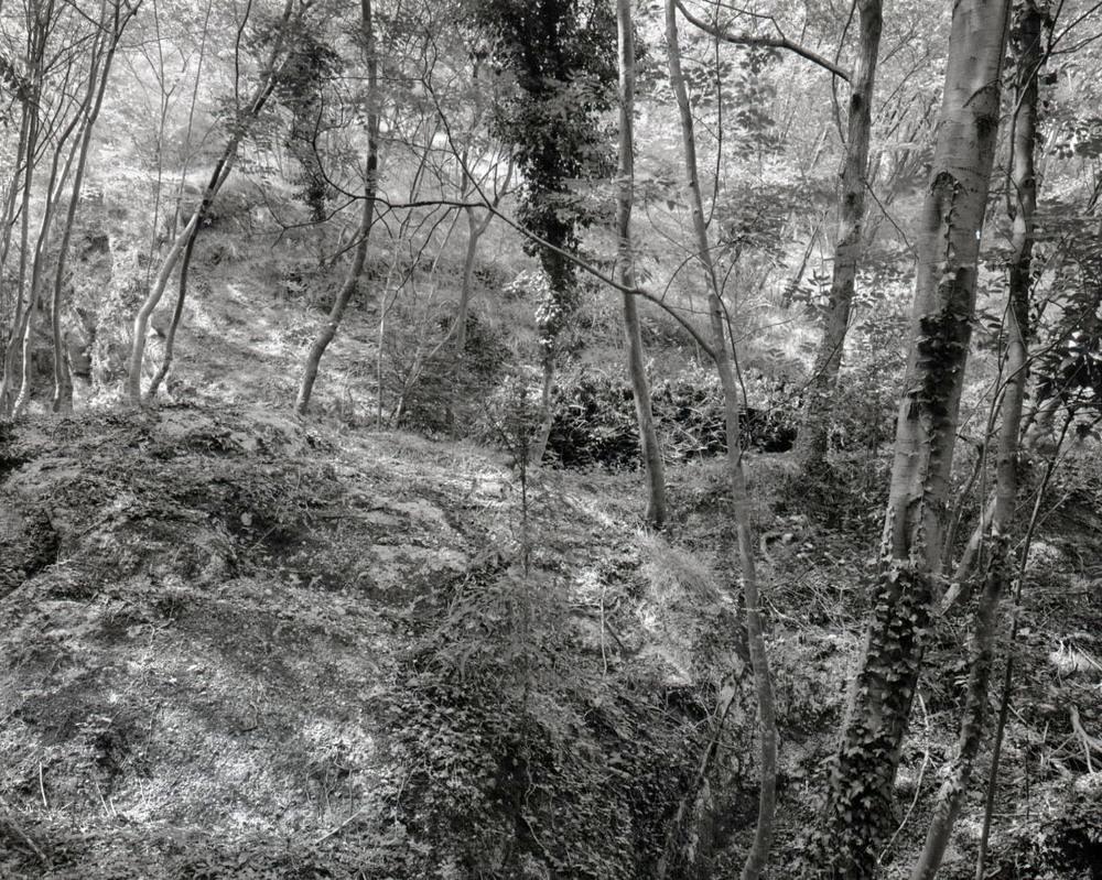 Lost village, Louvemont, near Verdun