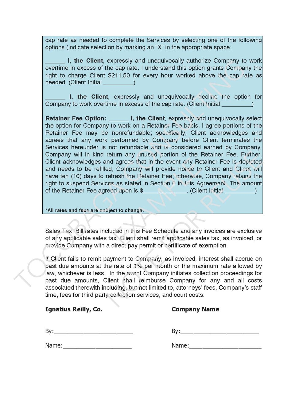 Company Services Agreement EXAMPLE_Page_13.jpg