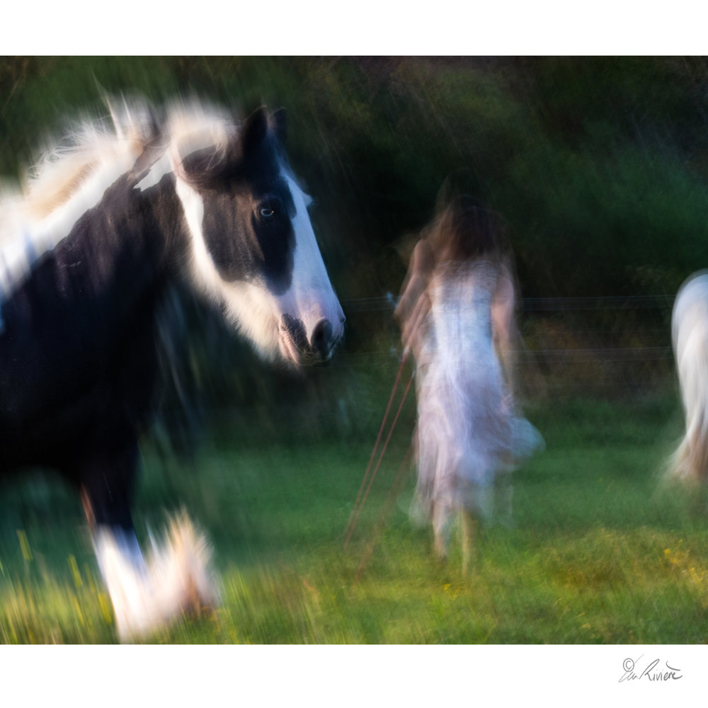 ©LÉA RIVIÈRE_ART_passion_horse27.jpg