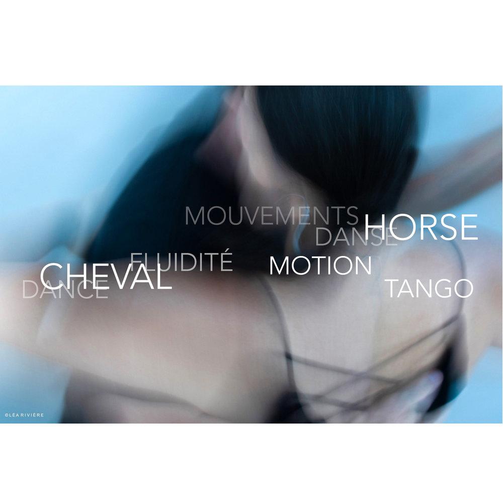 ©LÉA RIVIÈRE_ART_passion_horse19 BBB.jpg