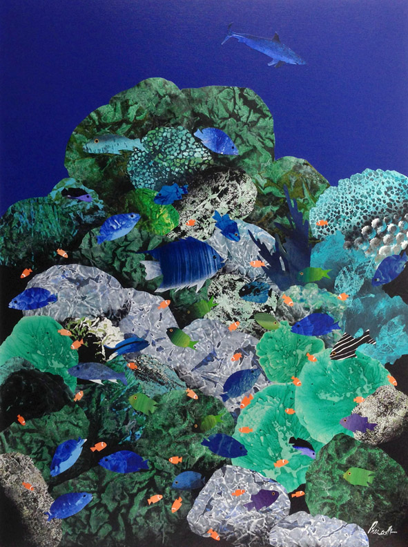 "Reef:    40"" x 30"", collage on canvas,  $1700 CDN  (unframed)     Purchase Information"
