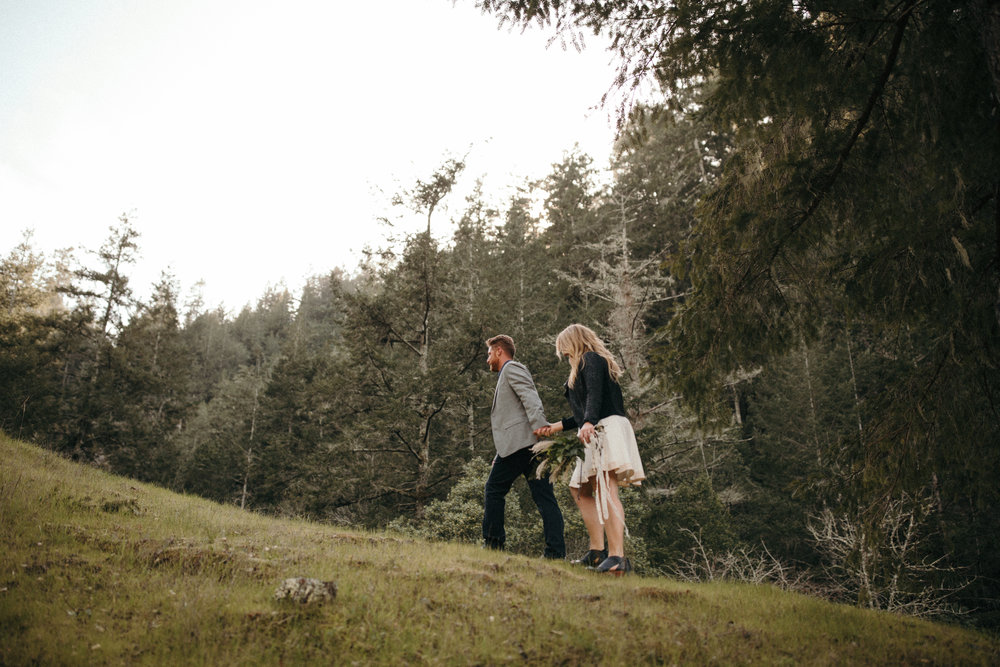 sanfrancisco-california-wedding-photographer-napa-california-engagements-west-marin-california-engagements-2.jpg