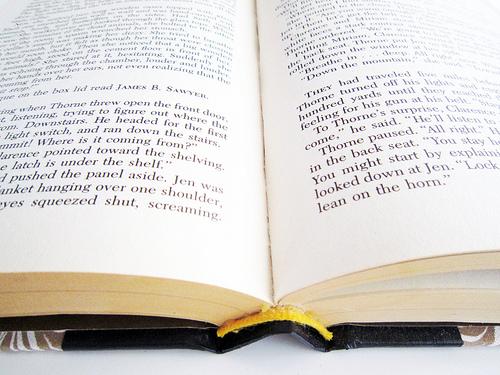book_open book.jpg
