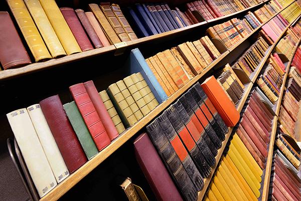 library_shutterstock_183888035[reduzido].jpg
