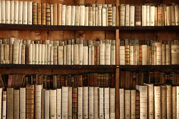 Library_1.jpg
