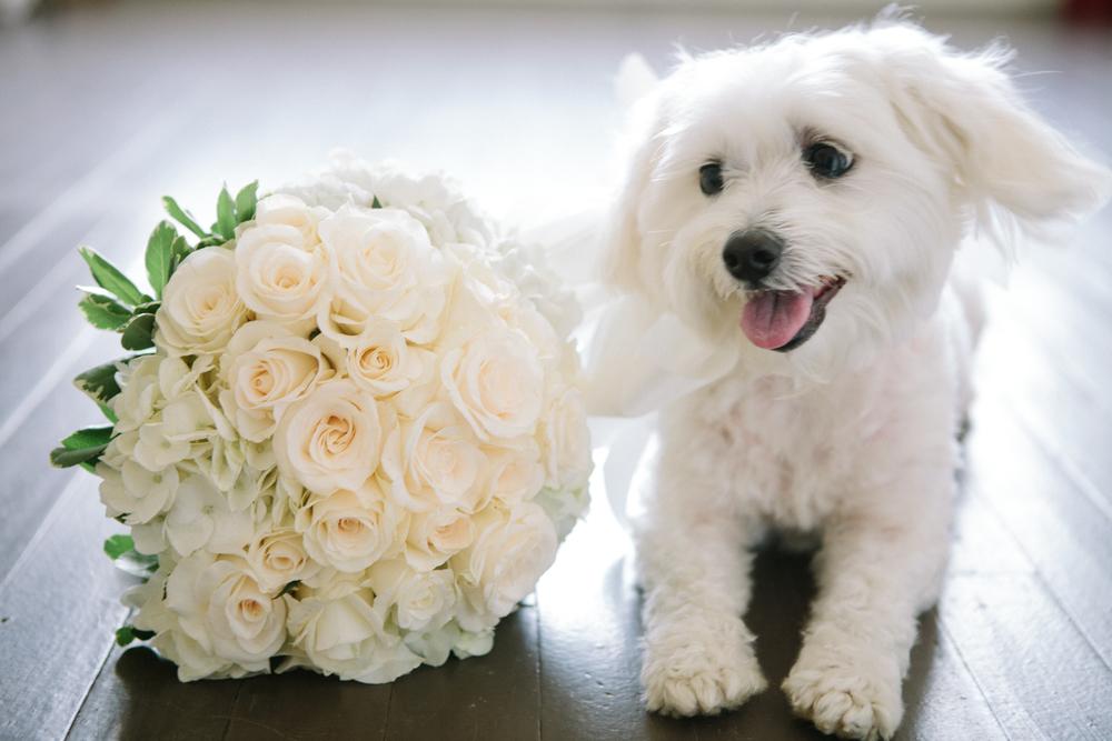 All-white bridal bouquet Augusta, GA wedding florist