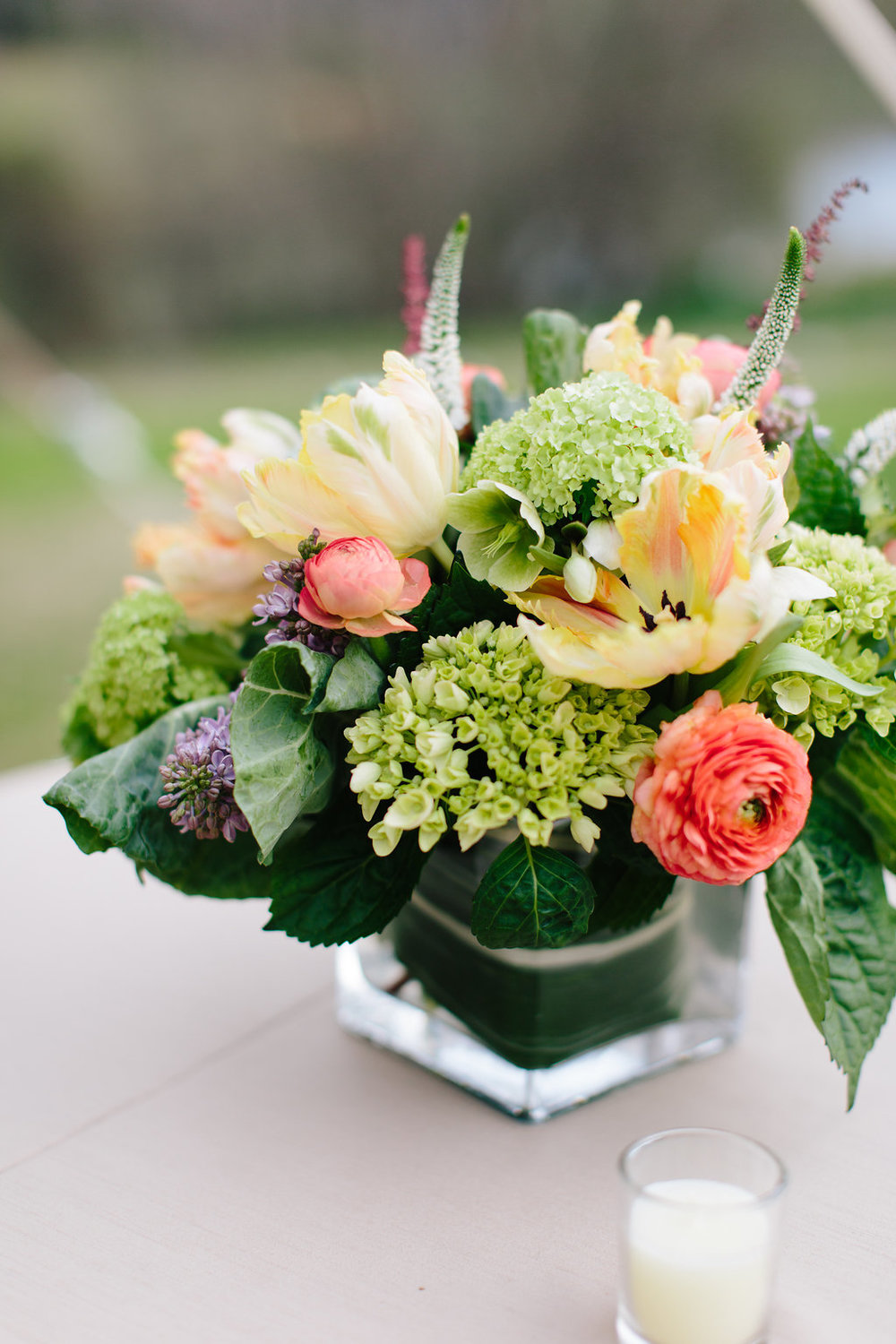 splash of color - Featured floral: tulip, ranculus, hydrangea, hellebores, lilac