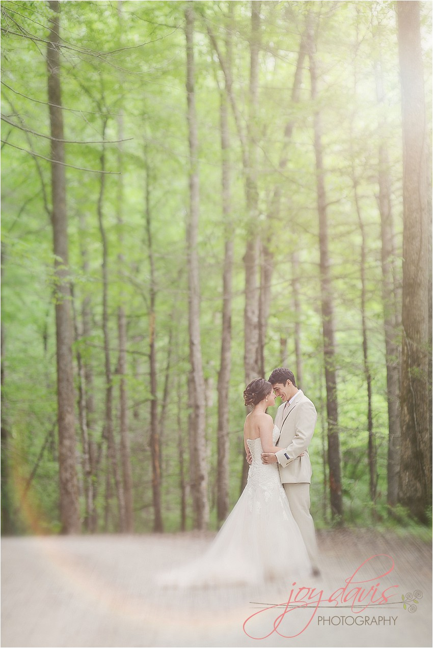nc weddings, marion nc weddings, asheville nc wedding photographers, lake tahoma weddings