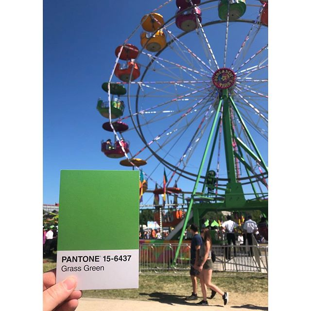 Happy Lakefair!!! 💚 . . . #OlyPantones #Pantone #Colors  #PantoneColors #PantoneGram #ColorInspiration #Olympia #Lakefair #Green #CapitolLake #FerrisWheel #PugetSound #Downtown #Bright #Design #IHaveThisThingWithColor #GraphicDesigner #ThurstonTalk