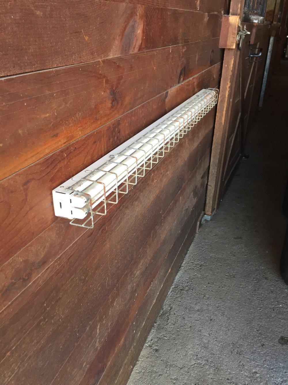 D5447AE8-FBC2-4888-A028-E99AE1540776.JPG