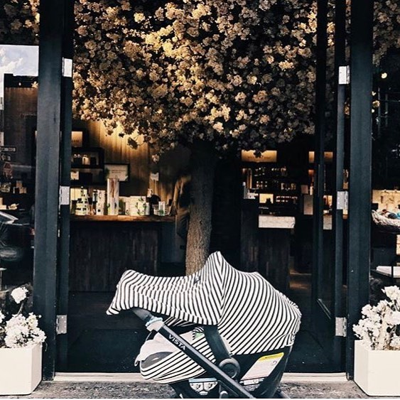We might not be able to see the cutie in the car seat but we'll settle for the gorgeous backdrop🍃🌸#skimmilk  #carseatcover #brooklynbabies #nychandmade