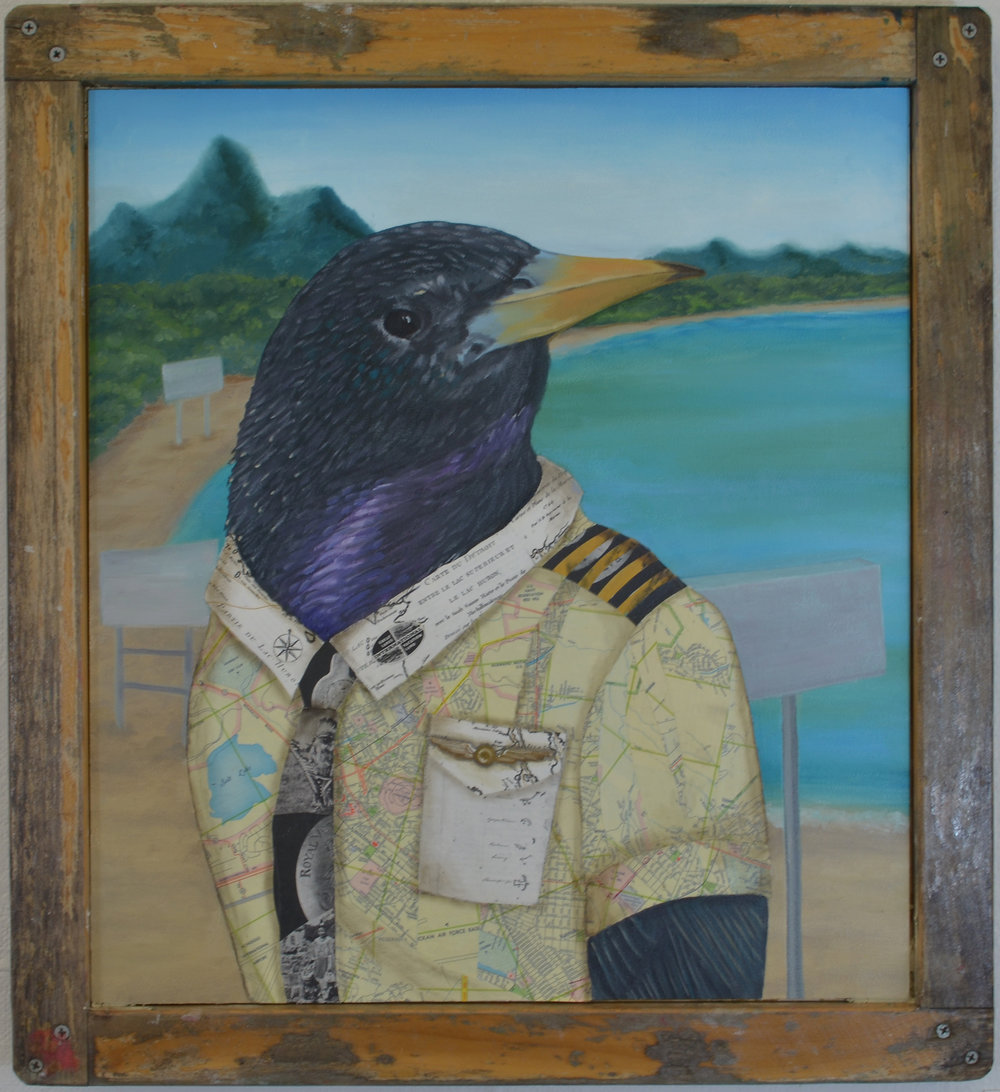 Invasive Species: European Starling