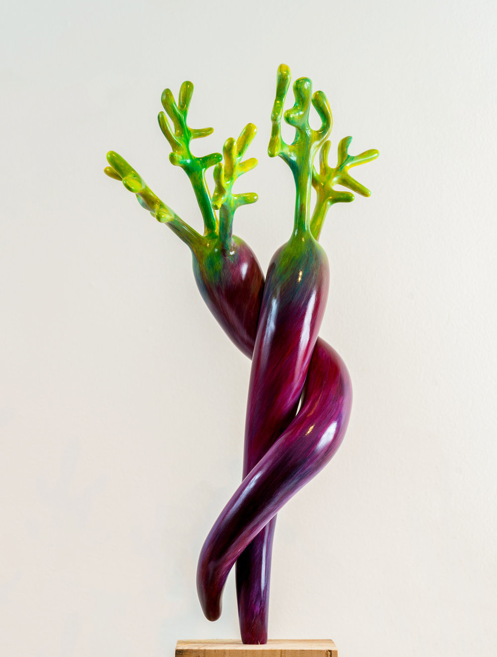 Patricias-Carrots_purple.jpg