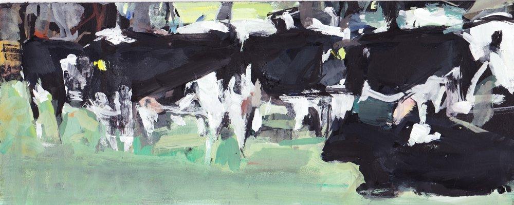 Herd casein 4x9.jpg