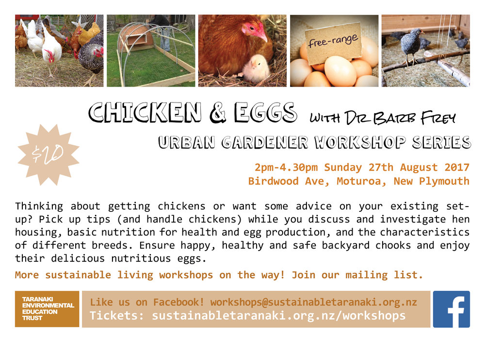 Chickens & eggs workshop flyer A4.jpg