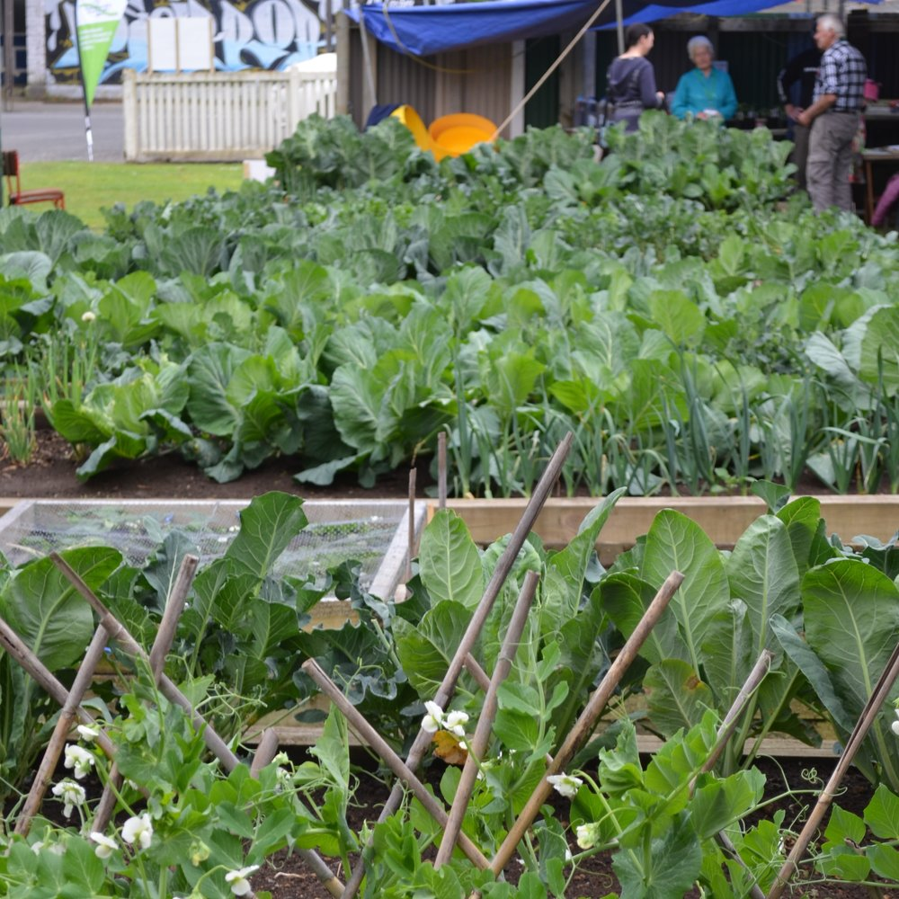 Community gardens & orchards -