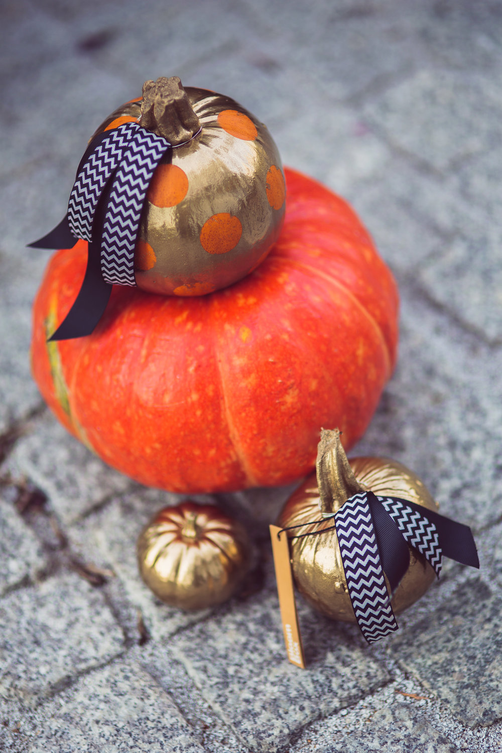 tie a ribbon around a pumpkin for a festive fall touch.