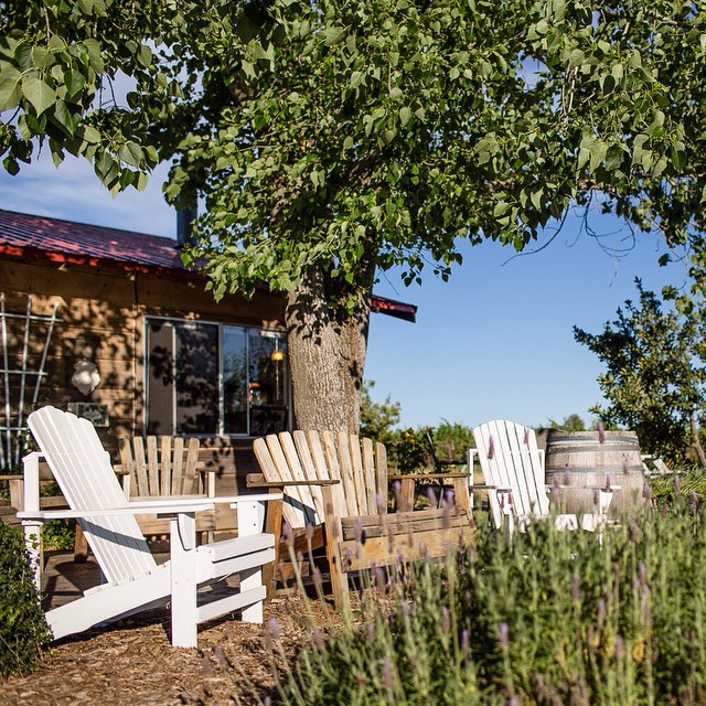 Relax and enjoy the view.  #lifeandthyme #winery #vino #wineoclock #winenot