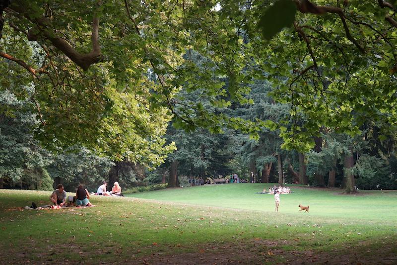Portland Public Park research (Harper's Playground)