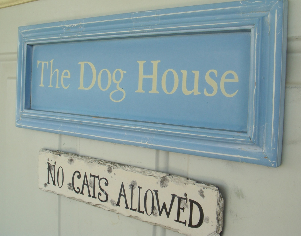 No Cats Allowed!