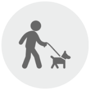 Visit Us Finally, bring your pet to the daycare so we can observe his behavior within a pack.