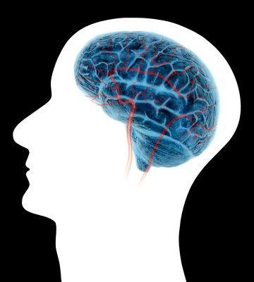 cerebro-en-cabeza1