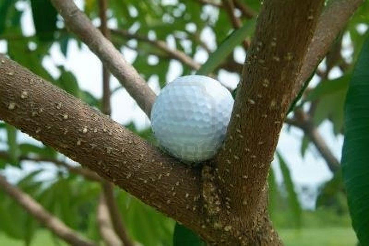 golf arbol