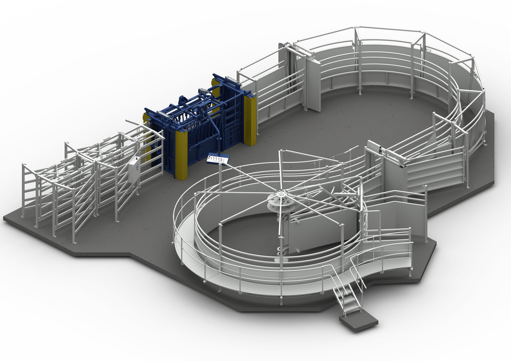 Thompson Longhorn core working centre (graphic representation) featuring: 360° crowding yard, single curved lane - vee profile, Sumo restrainer/crush, 5 way pneumatic sorting system / drafter & slide gates.