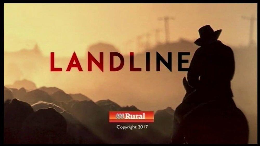 Landline pic.jpg