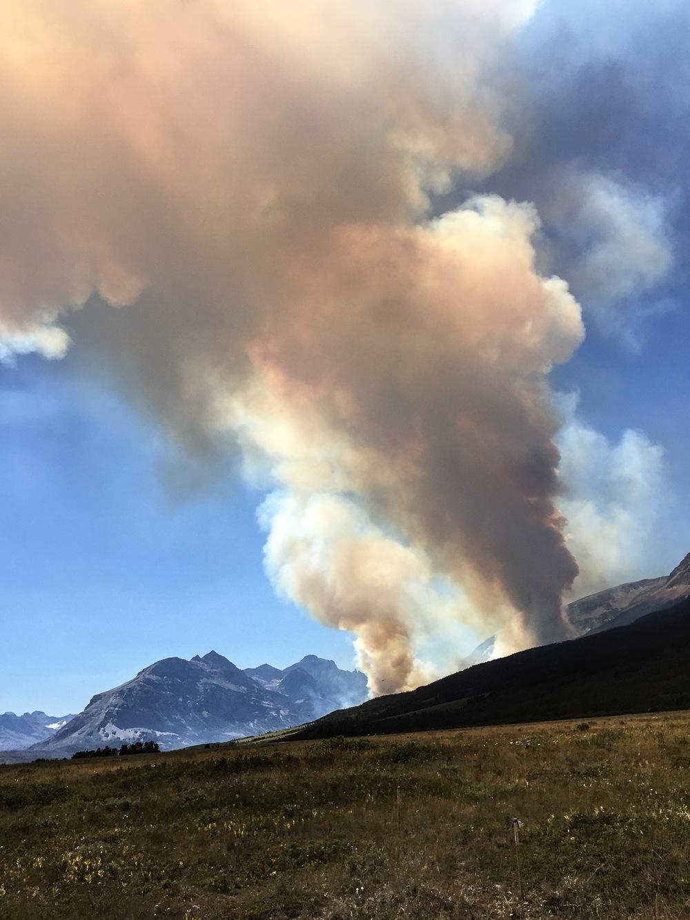 Fire, Glacier National Park