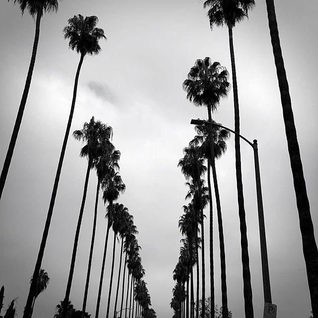 Home. #LA