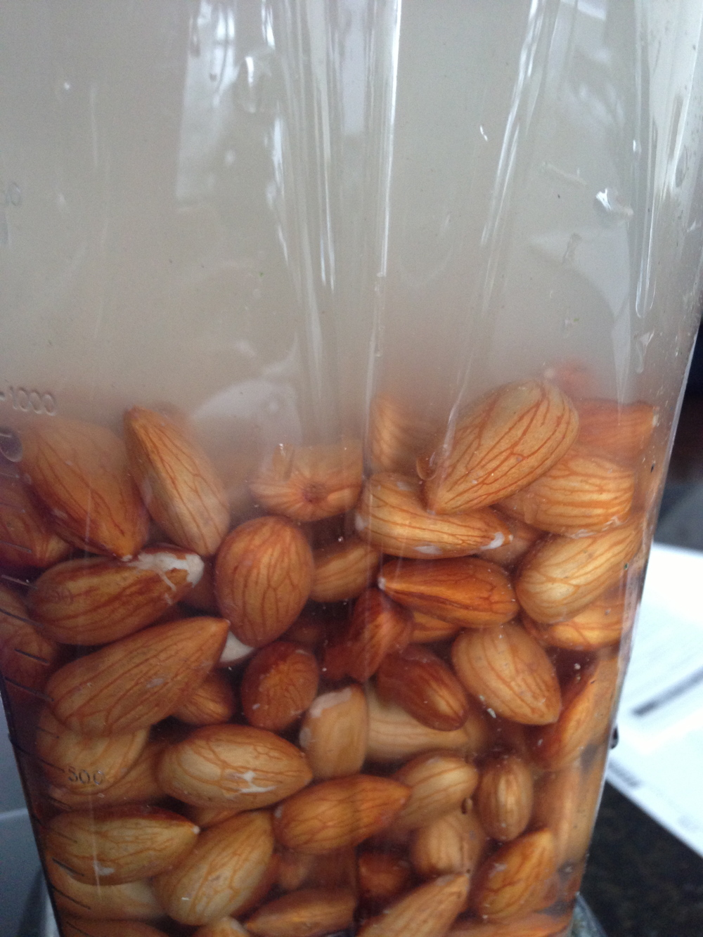Almonds in the Vitamix. Ready to blend